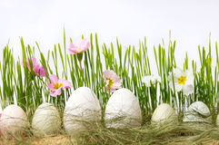 White chicken eggs and flowers in wheat Stock Photo