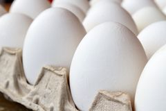 Free White Chicken Eggs In Cardboard Tray Closeup. Side View Stock Photo - 115906620