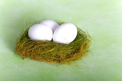 White chicken eggs in a nest Royalty Free Stock Image