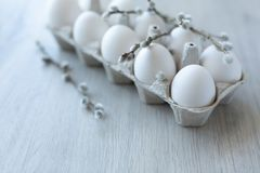 White chicken eggs in an open cardboard box on a light background decorated with willow branches with soft white buds. A dozen. Eggs in eco-friendly packaging royalty free stock images