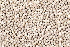 White chickpeas. A close up on white chickpeas Royalty Free Stock Photography