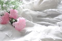 White Chiffon Fabric Background with Pink Flowers. White chiffon fabric background decorated with artificial pink carnation Royalty Free Stock Photo