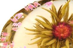 White Chinese Tea. Closeup of white chinese tea on a white background Royalty Free Stock Image