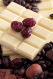 White chocolate bar with cranberries Stock Images