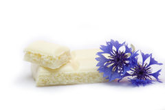 White chocolate with blue-bonnet Stock Images