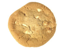 White Chocolate Chip Cookie Royalty Free Stock Image