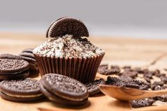 Chocolate cookie and cupcake Stock Photo