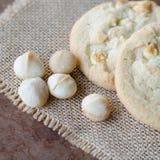 White chocolate macadamia cookie Stock Photo