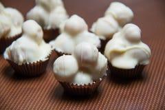 White chocolate macadamia nut  against  background. Royalty Free Stock Image