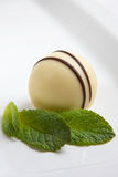 White chocolate truffle. And mint leaf royalty free stock photos