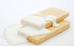 White chocolate wafer Royalty Free Stock Photos
