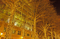 White Christmas Lights in Reston, Virginia Stock Photos