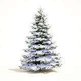 White Christmas Snow Tree Royalty Free Stock Photography