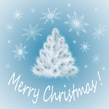 White Christmas tree on a blue Stock Images