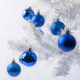 White Christmas tree branch with royal blue ornaments stock photo