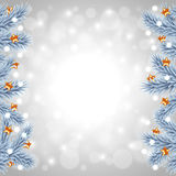 White Christmas tree branches on snowy background Royalty Free Stock Photo