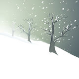 White Christmas trees Royalty Free Stock Image