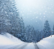 White christmas in the woods, scrapbook texture Royalty Free Stock Photos