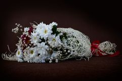 White Chrysanthemum in flower bouquet on brown canvas backround, horizontal Stock Image