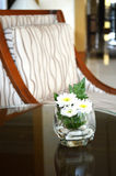 White chrysanthemum flower in glass. Vase on table Stock Photos