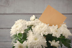 White Chrysanthemum in flower pot with gift, greeting card, on grey wooden backround Royalty Free Stock Images
