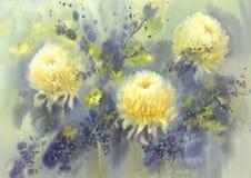 White chrysanthemum watercolor background Royalty Free Stock Photo