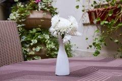 white chrysanthemum in a white vase stock photos