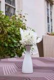 White chrysanthemum in a white vase stock images