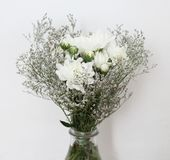White chrysanthemums in a bouquet Royalty Free Stock Images