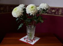 White chrysanthemums in a crystal vase stand on a table. White chrysanthemums of spherical form with a green core in a crystal vase stand on a table Stock Image