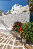 White chuch with blue roof and Flowers in town of Parakia, Paros island, Greece Royalty Free Stock Image