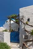 White chuch and vine in town of Parakia, Paros island, Greece Royalty Free Stock Photo