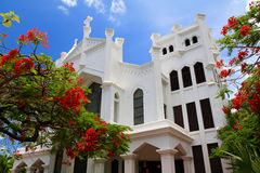 White church in Key West, Florida. St. Pauls Episcopal Church among the flamboyant trees Royalty Free Stock Photo