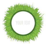 White Circle Frame Template On Grass Field. Decorative Vector Illustration. Royalty Free Stock Photo