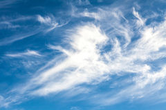 White cirrus clouds Royalty Free Stock Images