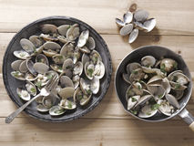 White clams in white wine sauce Stock Photos
