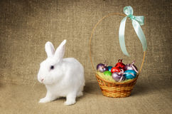 White clean beautiful Easter bunny next to a wicker basket with eggs in the background krashenyymi natural burlap cloth. White clean beautiful Easter bunny next royalty free stock images