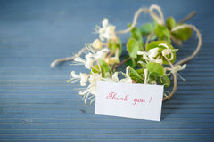 White clematis flowers gratefully Stock Photography
