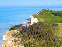 White cliffs and Belle Tout lighthouse Stock Image