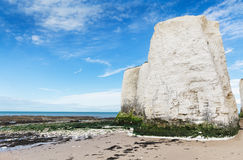 White cliffs Botany Bay La Manche English channel Royalty Free Stock Photos