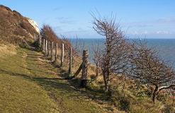 White cliffs of Dover by the sea. Royalty Free Stock Photography