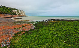 White Cliffs of Dover at St Margarets at Cliffe along Dover Straits Stock Photography