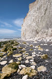 The White Cliffs, East Sussex, UK. The beach and white cliffs at Birling Gap, East Sussex, UK Royalty Free Stock Photos