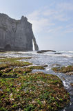 White Cliffs at Etretat Royalty Free Stock Images