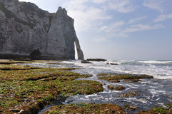 white Cliffs of Etretat in France Royalty Free Stock Photography