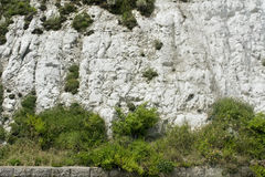 White cliffs. Seaside walk white cliffs coast Royalty Free Stock Photo