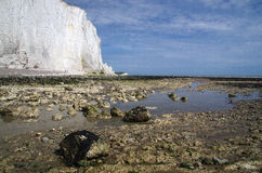 White cliffs of south England. Famous white cliffs of south England Royalty Free Stock Images