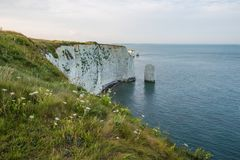 White Cliffs with Turquoise Atlantic Ocean on a Sunny Day royalty free stock photos