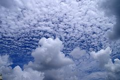 White cloud Stock Images