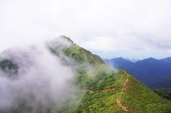 White cloud around the mountaintop Royalty Free Stock Photo